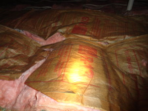 Attic Insulation wrong side up