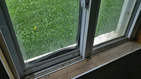 Window issues with hermetic seals - How to caulk exterior window trim ...